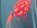camisetas_monstruosa13_700